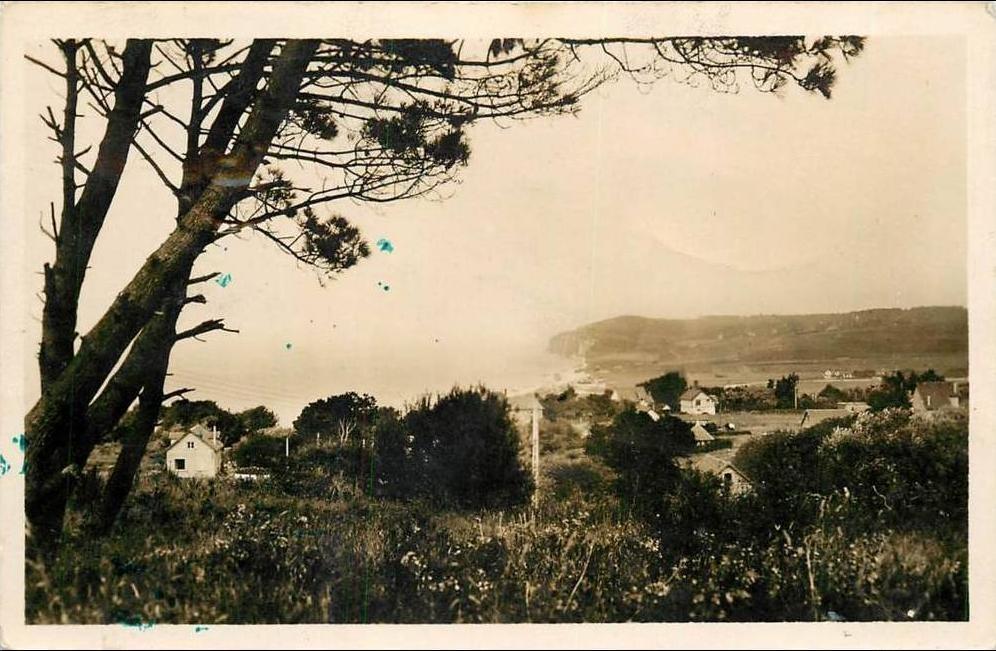 Gîte Les baguenaudiers - Quiberville carte postale ancienne